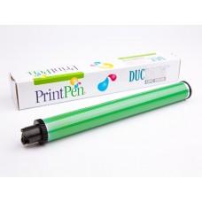 DRUM (DUC) XEROX PHASER 4510>EPSON M4000&MINOLTA 5650&OKI B6500